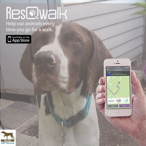 ResQWalkGSP_custom1