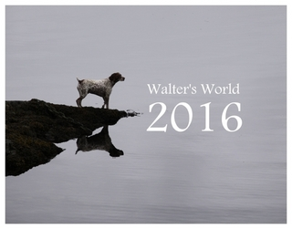 2016WalterCover