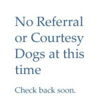 Referral & Courtesy Dogs – none