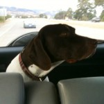 Adding the sights to his GPS-GSP navigation system