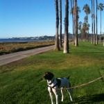 Good morning Santa Barbara!