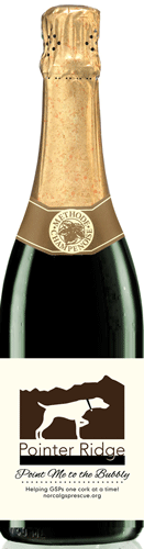 GSP_Bubbly_bottle