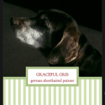 Graceful-Gris---Heather-Deiss---label
