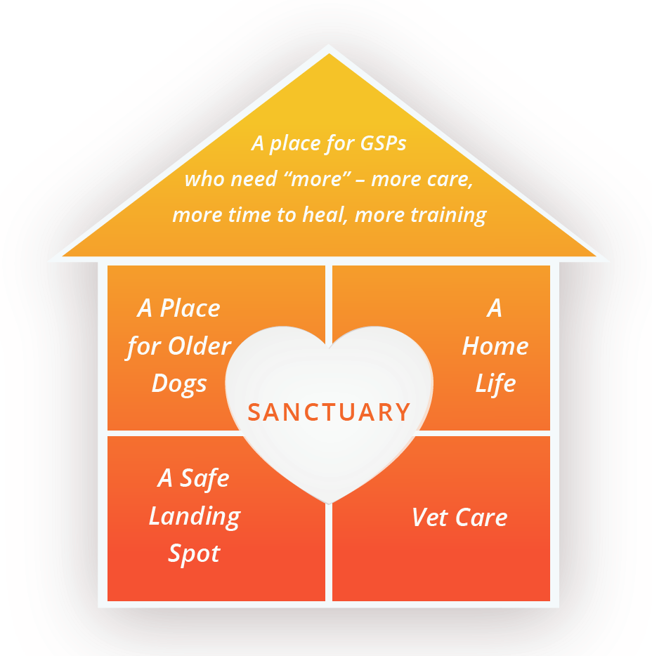 sanctuary graphic