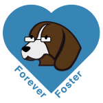 forever foster icon