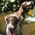 Layla & James cooling off