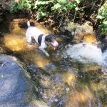 Layla cooling off