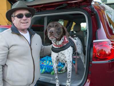 A man with a dog in the back hatch of his car, an example of transporting