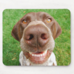Photo of mousepad with smiling GSP face
