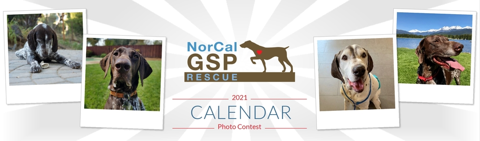 a banner image that says 2021 Calendar Photo Contest, with 4 images of GSPs