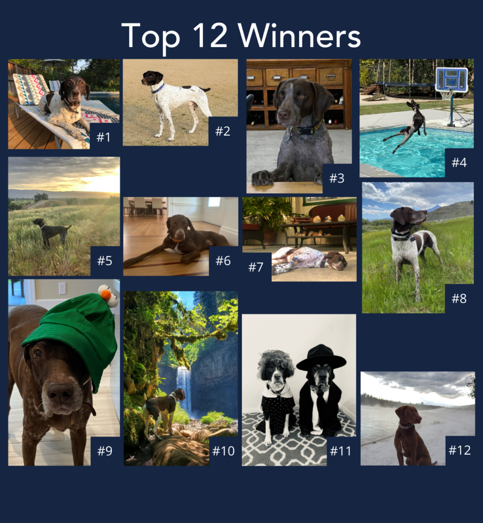 a collage of photos of the 12 calendar contest winning photos