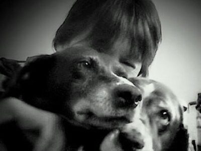 A black and white photo of the faces GSP Hazel and Springer Spaniel Caper, with the forever mom behind them